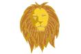 Compatibilidad de Acuario con cada Leo